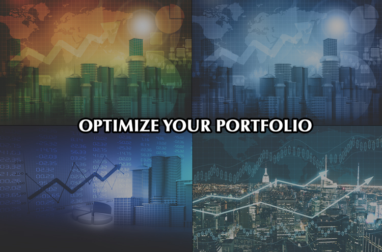Commercial Real Estate Portfolio Optimization